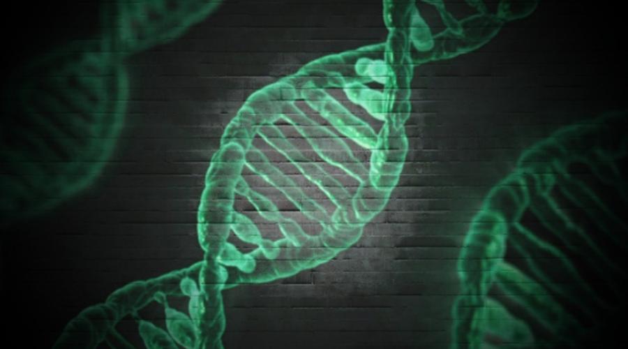 D313Y & A143T: Fabry-Mutationen im Fokus!